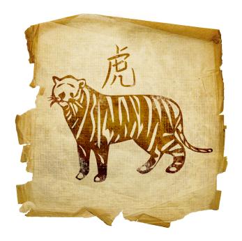 Traveledncaptured: Tiger Temple-A Photo-essay!!